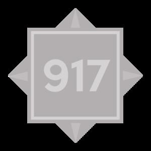 (917) 231-8000