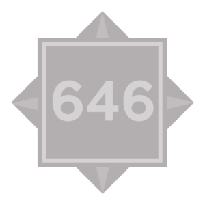 (646) 343-5300